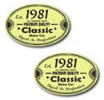 PAIR Distressed Aged Established 1981 Aged To Perfection Oval Design Vinyl Car Sticker 70x45mm Each